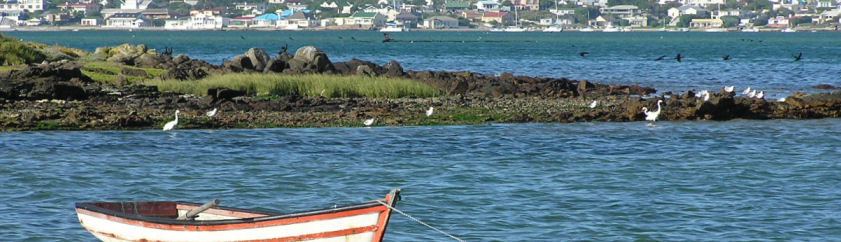 Saldanha Accommodation - Browse Online For Your Saldanha Self Catering, Bed and Breakfast Accommodation - Saldanha Budget Family Holiday Accommodation